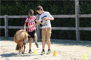 Pony Power voor Kids cursus